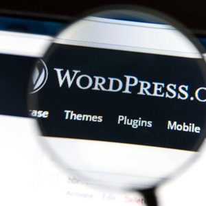 4 Tips to Choosing WordPress eCommerce Themes